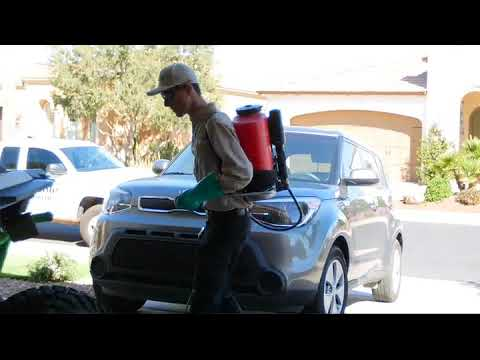 Affordable Pest Control | Serving The East Valley | Arizona