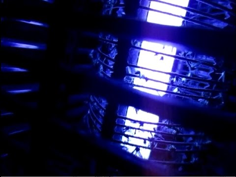 Bug Zapper  Electric Lamp Mosquito Killer  Does It Really Work?