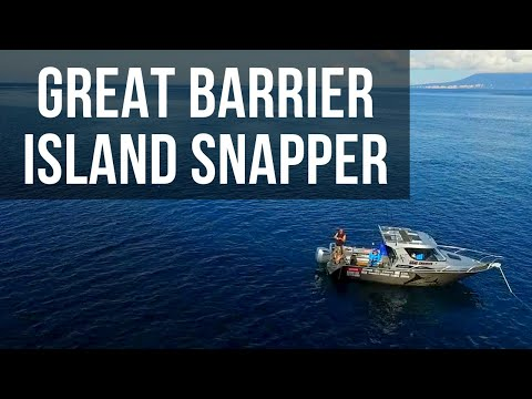 Snapper Fishing Great Barrier featuring Travis Munday (Season 4 Ep 6)