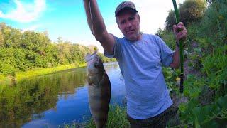 Рыбалка на реке в конце июля разнорыбица в действии