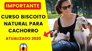 ⛔ curso biscoito natural para cachorro receitas de biscoitos para seu cão e para vender