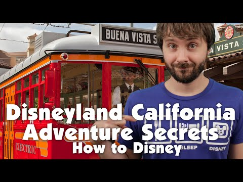 DISNEY CALIFORNIA ADVENTURE SECRETS