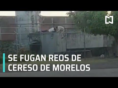 Fuga De Reos Del Cereso De Morelos - Las Noticias