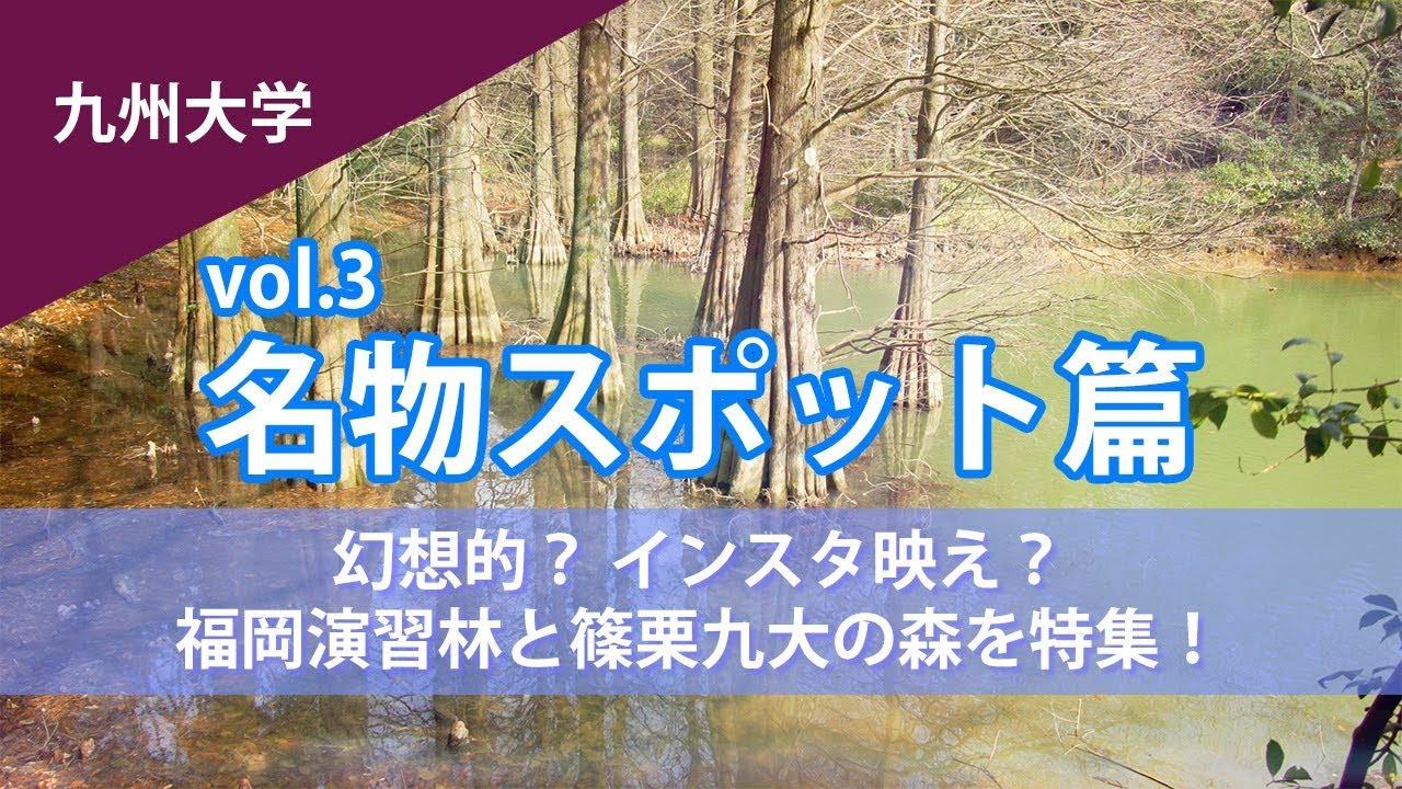 「まるでジブリ」と話題!九州大学 篠栗九大の森に潜入!