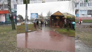 В Гродно сегодня дождь, 10 12 2016