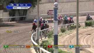 Vidéo de la course PMU PREMIO MACACO