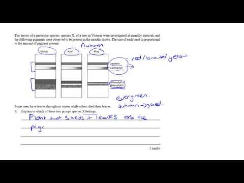 VCE Biology 2009 Exam youtube