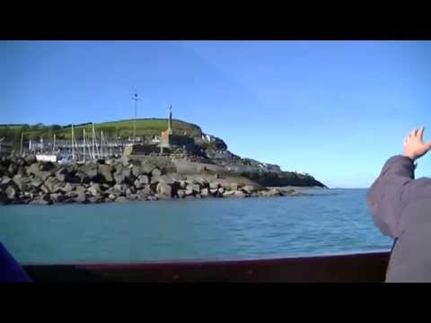 Dolphin Spotting at Newquay West Wales UK