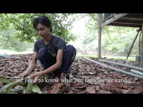 Mekong Youth Alliance for Organic Agriculture and Agroecology