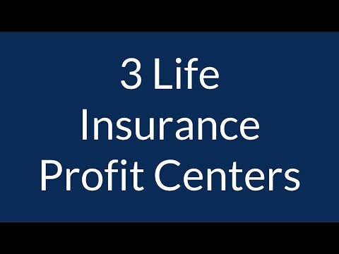 3 Life Insurance Profit Centers for Agents