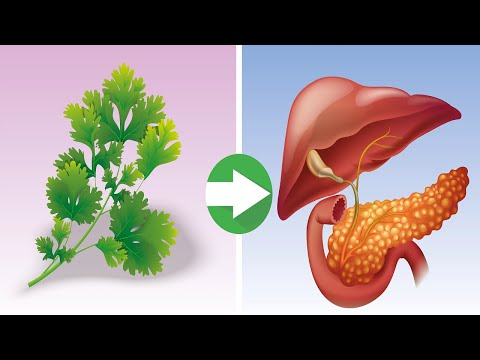 This Can Cure Your Kidneys, Pancreas and Liver in a Single Blow and in Addition… There is no Med