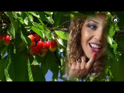 Lucanella 2017 Videoclip - Mimmo Carlomagno