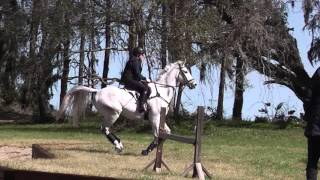Tay and Taz - Highlights from lesson with Karen O