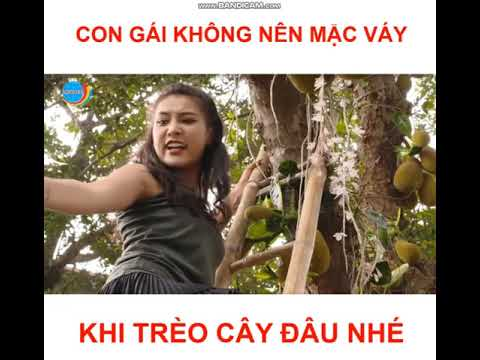 [ Quang Linh Vlogs ] Khi Con Gái Mặc Váy Ngắn Trèo Cây Hát Mít Và Cái Kết !