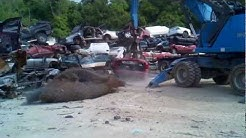 Sunshine Recycling - Car Crushing for Blue and Gold Auto Salvage