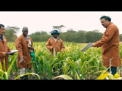 CGIAR: Feeding our future