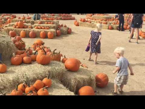 MacDonalds Ranch and Pumpkin Patch, in Scottsdale, Arizona
