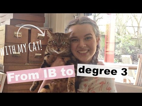 My Education Experience | 2 Degrees At 21 | Law School?!