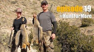 Bobcat & Fox Hunting *Episode 19