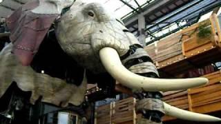 Un éléphant en promenade sur l'Ile de Nantes