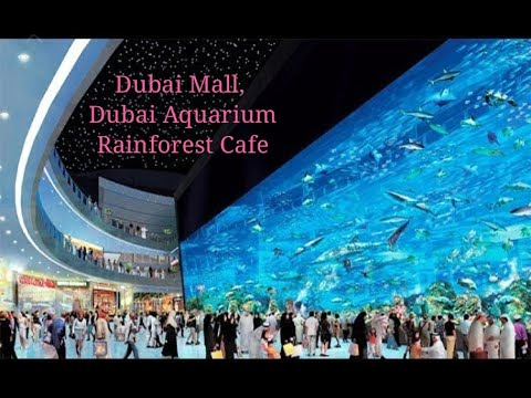 DUBAI MALL,WORLD LARGEST SHOPPING MALL,RAINFOREST CAFE IN DUBAI,DUBAI AQUARIUM, DUBAI MALL ICE RINK