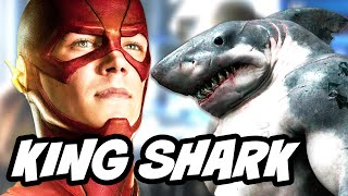 The Flash Season 2 Episode 15 King Shark vs Arrow Explained
