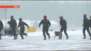 Самые ОТВАЖНЫЕ собаки | Репортаж о нелёгкой работе псов-спасателей