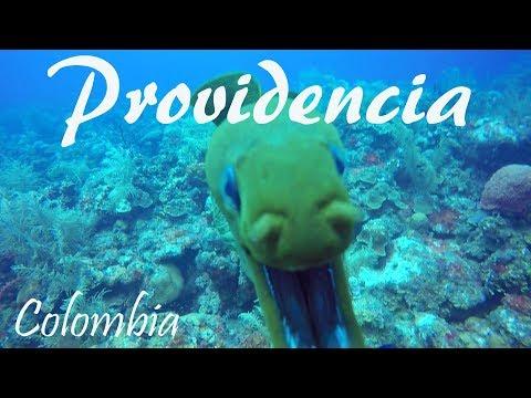 Diving Isla De Providencia In Colombia (Dive Sites El Planchon, Sonny's Place & Bajo De San Felipe)