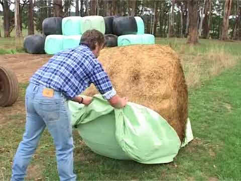 TopFodder Silage: Feeding Out - Waste Not Want Not.