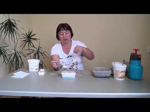 Эфирное масло мяты, польза и свойства мятного масла