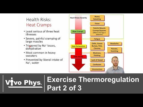 Exercise Thermoregulation Part 2 of 3 Exercise in the Heat