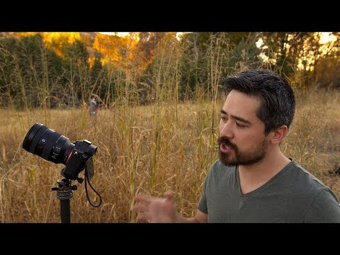 Sony A7R III Hands-On Field Test (In Arizona!)