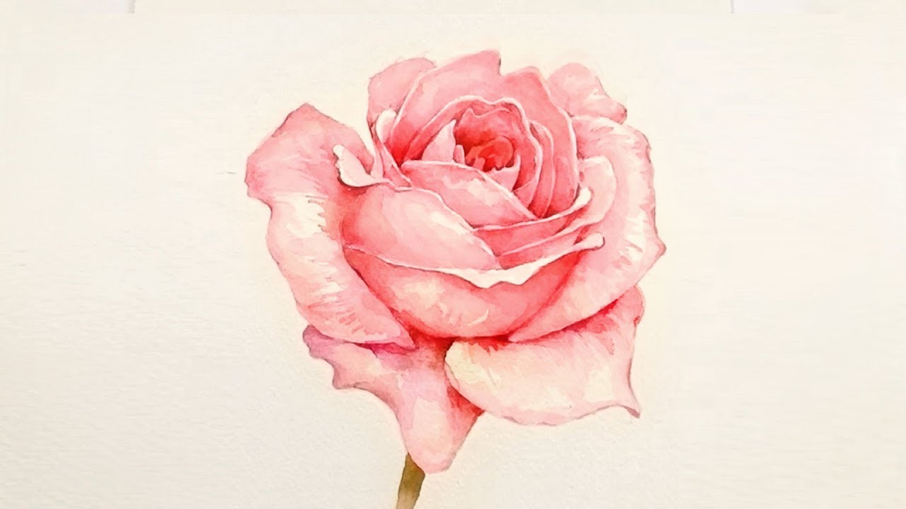 [LVL5] Realistic Rose in Watercolor | Painting Tutorial ...
