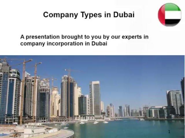 Types of companies in Dubai