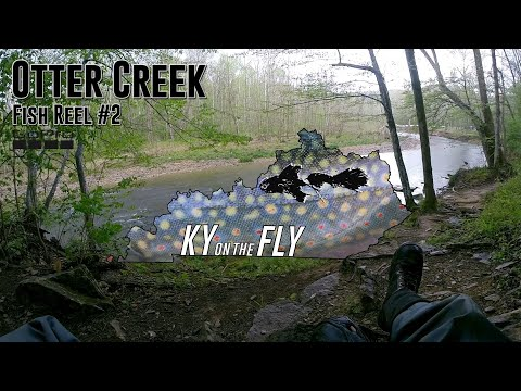 Fly Fishing Otter Creek #2