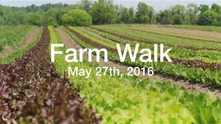 Farm Walk - Roxbury Farm CSA