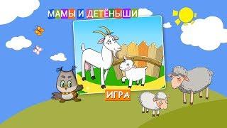Развивающая Игра – Мамы и их Детёныши