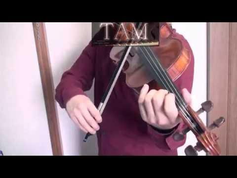 CLANNAD AFTER STORY 時を刻む唄 / toki wo kizamu oto / violin:TAM