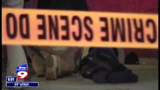 Club Rayne Shooting, Tampa, Florida - News Coverage