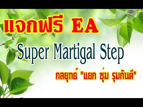 แจกฟรี !!! EA Forex Super Martigal Step