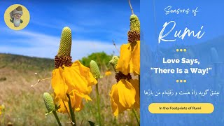 "Seasons of Rumi - ""Love says, there is a way!"" - (In Persian and English)"