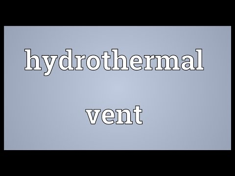 Hydrothermal vent Meaning
