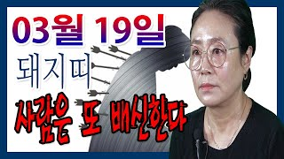 2020년 03월 19일 오늘의 운세 띠별 운세 돼지띠 한번 배신한 사람은 또 배신한다 수미산당 구슬보살 0…