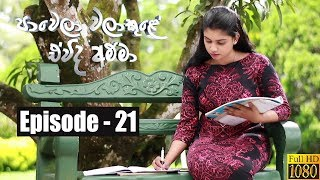 Paawela Walakule | Episode 21 20th October 2019 Thumbnail