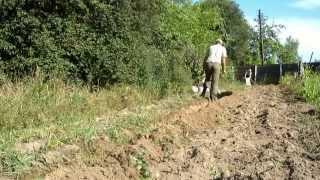 Электроплуг Лебёдка сельскохозяйственная ЛС 100А 4 часть.Осенняя вспашка огорода.Собираем картофель(