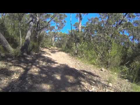 Mountain Bike - Sydney Royal National Park