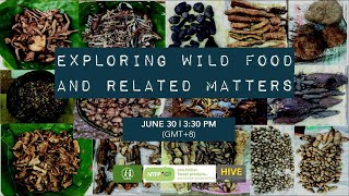 Exploring Wild Food and Related Matters - SIANI Expert Group Discussion Series #1
