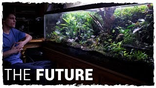 diy vivarium with waterfall
