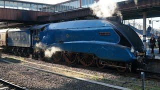 "LNER Class A4 ""Bittern"" & GWR Castle Class  ""Earl of Mount Edgcumbe"""