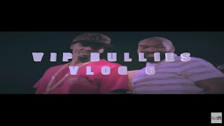 VIP BULLIES VLOG 6 II NEW BREED